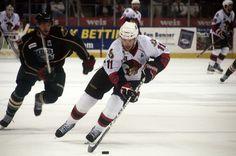 The Binghamton Senators are an American Hockey League affiliate of the Ottawa Senators. American Hockey League, Ottawa