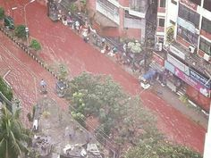 Roads were also red in Dhaka, Bangladesh's capital, His sacrifice was not held…