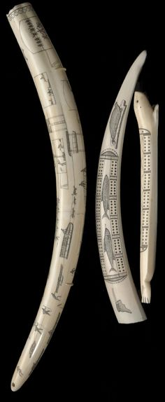 Three Eskimo scrimshaw items  Including a full walrus tusk, completely engraved to depict hunting scenes, animals, and vignettes of village and domestic life; and two drilled cribbage boards, one in the shape of a seal, the other decorated with images of sea creatures.