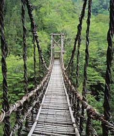 Iya Valley Vine Bridges, Japan  Shikoku, the smallest of Japan's four main islands, is home to three vine bridges. The originals were built with slats of wood placed between 7 and 12 inches apart, secured in place with two single vines. While the new bridges are reinforced with wire and hand rails, they're still not for the faint of heart.    Where: Tokushima, over the Iya-gawa River    Stats: 148 feet long; 46 feet high.