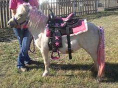 Birthday Party Pony, again just one design out of many. Will post more when I have time.