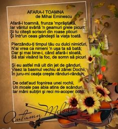Sms Language, Just Me, Thoughts, Words, Google, Autumn, Floral, Fall, Florals