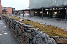 Viinijärven Kiven luonnonpintainen muurikivi Joensuun yliopiston edessä. Kiviaita on rakenteltaan kylmämuuri, eli siinä ei ole käytetty muurauslaastia vaan kivet ovat ladottu vapaasti toistensa päälle.