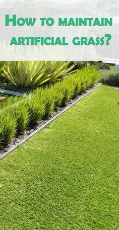 With all the advantages fake turf is offering, is it really possible to maintain it more easily than the real grass? Since this sounds too good to be true, we have done some research for you, so get ready to be amazed! Artificial Grass Carpet, Artificial Turf, Fake Turf, Fake Grass, Fake Lawn, Small Backyard Patio, Astro Turf, Backyard Landscaping, Planters