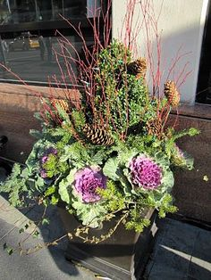 Now that the weather is about to start cooling off and football season is well on its way, its time to start thinking about planting our favorite fall flowers. Your choice of fall flowers will be with throughout the holiday season. What better way to greet your guests than with two beautiful planters flanking your … … Continue reading →