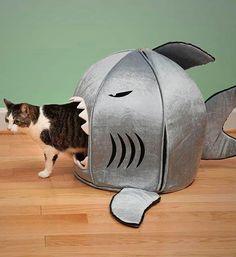 Cat basket shaped like a shark  #cat #basket