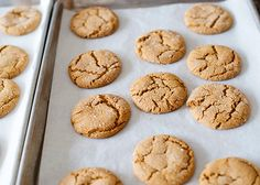 the best ginger cookie recipe