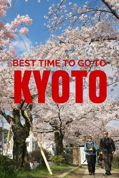 Thinking about a trip to Kyoto, Japan. When is the best time to go and why.