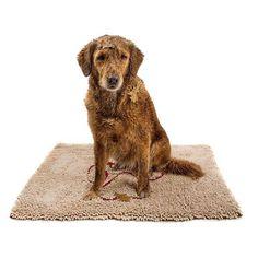 Kommen Sie einfach vorbei und überzeugen Sie sich selber von unserer Qualität. Dogs, Animals, Simple, Animales, Animaux, Animal Memes, Animal, Pet Dogs, Dog