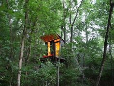 Chic Tennessee treehouse hideaway built for $1,500
