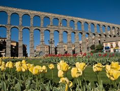 The Aqueduct, Segovia, Spain Bay Of Biscay, Planet Earth, Old Town, Madrid, Dolores Park, Trail, Around The Worlds, Europe, Tours