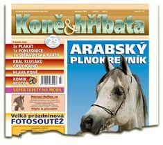 Červenec 2006 Equestrian, Magazines, Horses, Movie Posters, Art, Journals, Art Background, Film Poster, Horseback Riding