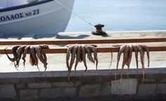 Fresh octopus hauled from the Aegean drape over the wooded rails at the fishing port of Naoussa, on Paros