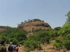 Bhorgiri - Bhimashankar Trek >>>#Maharashtra #ArtandcultureTrip #PhotographyTrip