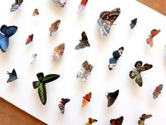 I created a DIY faux taxidermy butterfly shadow box: I cut out butterflies from a paper print and framed them. The butterflies look great! House Furniture Design, Chair Design, Design Design, Modern Furniture, Blue And White Living Room, 3d Frames, Diy Shadow Box, South Shore Decorating, Paper Butterflies