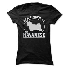 ALL I NEED IS MY HAVANESE T Shirts, Hoodies. Check Price ==► https://www.sunfrog.com/LifeStyle/ALL-I-NEED-IS-MY-HAVANESE-T-SHIRTS-Ladies.html?41382