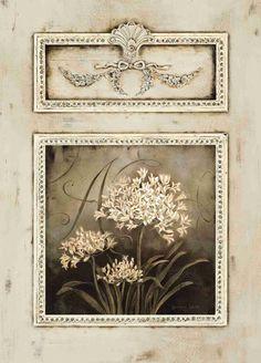 Agapanthus Trumeau ~ Kathryn White