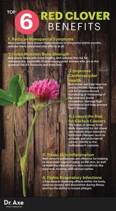 Red clover benefits - Dr. Axe www.draxe.com #health #Holistic #natural