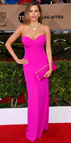 2016 SAG Awards Red Carpet -  Sofia Vergara in Vera Wang with Jimmy Choo shoes