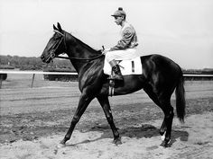 Bold Ruler and Eddie Arcaro. Arcaro (February 19, 1916–November 14, 1997), was an American Thoroughbred horse racing Hall of Fame jockey who won more American classic races than any other jockey in history and is the only rider to have won the U.S. Triple Crown twice.