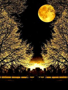 Winter's Moon, full moon tonight folks great time for releasing and letting go, put it out there to the universe, and she will reward you for your bravery. Description from pinterest.com. I searched for this on bing.com/images