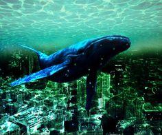 Подводный мир! uNDERWATER