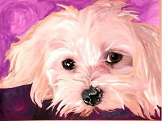 Those Eyes from The Rainbow Cat and Dazzling Dogs by DaWanda.com