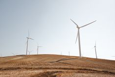 Apple, Etsy, Swiss Re partner to develop 290MW of wind and solar. Each company has committed to sourcing 100% of their electricity needs for their global operations from renewable energy.