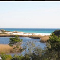 My view soon to be of The Emerald Coast.....from the Penthouse at Sanctuary at Redfish in Blue Mountain Beach just East of Destin, Florida.