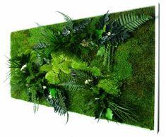 Tableau Végétal stabilisé NATURE rectangle XL - 349,00 €