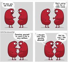 Kidney transplant humor