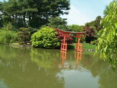 The Japanese Garden, Brooklyn Botanic Garden