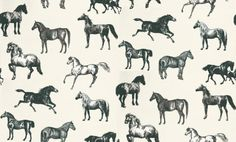 Collette (760-91) - Sandberg Wallpapers - A stunning horse motif design – with different breeds of horse drawn in a naturalistic etching style.   Available in 4 colourways – shown in the black and white set against a cool cream background. Please ask for a sample for true colour match.