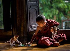 """""""Tenderness and kindness are not signs of weakness and despair But manifestations of strength and resolution. Buddhist Monk, Buddhist Art, Collateral Beauty, Little Buddha, Buddha Painting, Tibetan Art, Precious Children, Meditation Music, Nature Pictures"""