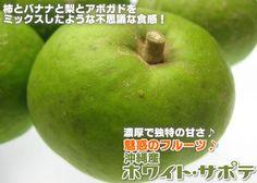 魅惑のフルーツ♪沖縄産「ホワイトサポテ」