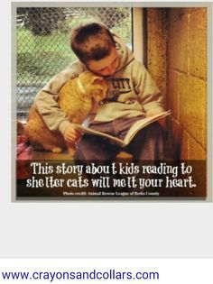 Aaaawwwwww Les Innocents, New Foto, Animal Rescue League, Photo Chat, Faith In Humanity Restored, Kids Reading, Reading Skills, Reading Buddies, Reading Art