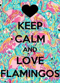 Keep calm flamingos Keep Calm Posters, Keep Calm Quotes, Flamingo Decor, Pink Flamingos, Flamingo Pictures, Pink Bird, Pink Feathers, Keep Calm And Love, Exotic Birds