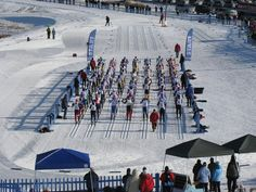 Looks Awesome... Nordic Ski St Paul Mn