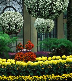 The conservatory at Longwood Gardens