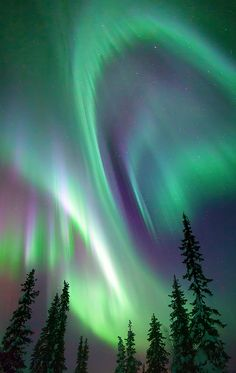 Angel (Swedish Lapland) by Justin Reznick on 500px