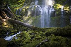 Travel | Oregon | Attractions | Things To Do | Hidden Gems | Unique | Trip | Explore | Adventure | Nature | Waterfall | Hike | Easy