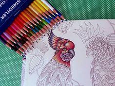 Karina Andrade (@arte.conceito) • Instagram photos and videos