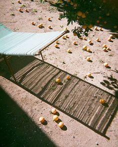 Shop Instagram – Style Addict