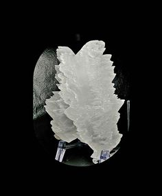 Selenite Gypsum BIG Fishtail Swallowtail Twin Crystals Display