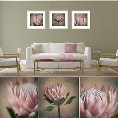 Fine Art Photography applied to create a range of custom Wallpapers, large format prints ideal for decorating your home or office space, cushion covers, purs. Protea Art, Flor Protea, Protea Flower, Polychromos, Handmade Home Decor, Botanical Prints, Painting Inspiration, Decoration, Fine Art Photography