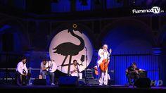 Diego Carrasco en la Noche Blanca del Flamenco --   https://elgurudelcompas.wordpress.com/page/2/  ---enlace