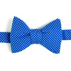 Nœud papillon Mini pois bleu dur  Royal blue with pin dots bow tie