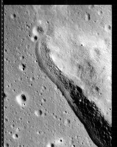 3199_H3.jpg (1650×2071)