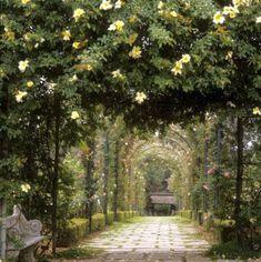 29 Ideas garden wedding aisle walkways paths for 2019 The Secret Garden, Secret Gardens, Jardin Decor, Tuscan Garden, Nature Aesthetic, Dream Garden, Landscape Design, Italy Landscape, Countryside