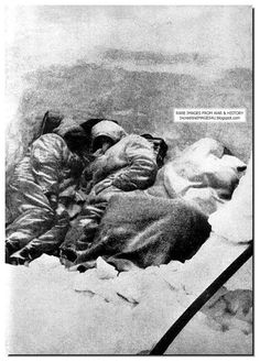 dead germans frozen in stalingrad/hitler would not let them surrender/great leaderILLUSTRATED HISTORY: RELIVE THE TIMES: Unseen Pictures From Battle Of Stalingrad: Large Images: Part 1